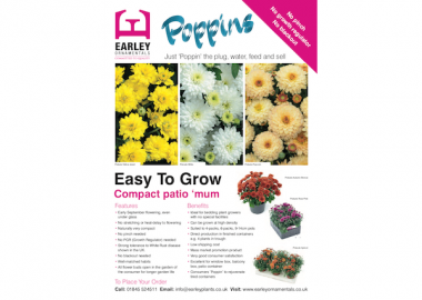 Poppins Leaflet Earley Ornamentals
