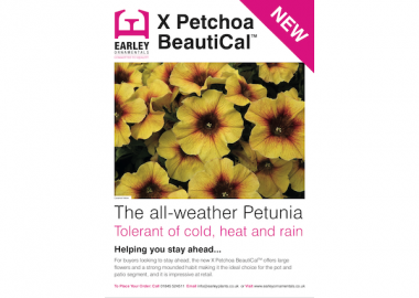 XPetchoa BeautiCal Leaflet Earley Ornamentals
