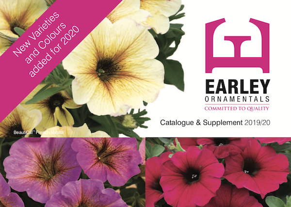 Bedding Catalogue Earley Ornamentals