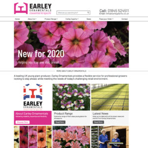 News New Earley Website B